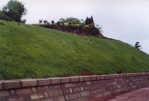 边坡喷草(达渝高速边坡修复)