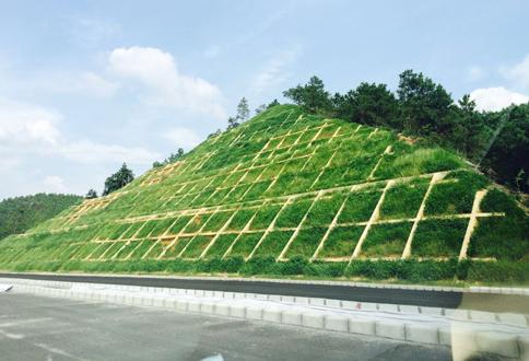揭博高速公路边坡喷草