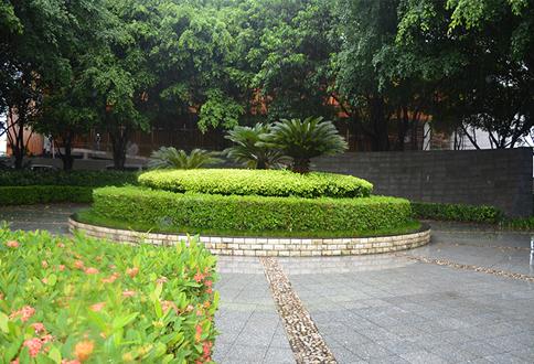 梅林公共绿地管养