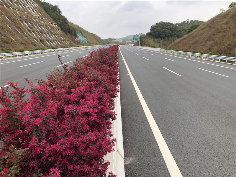 惠清高速公路与管理中心园林景观工程